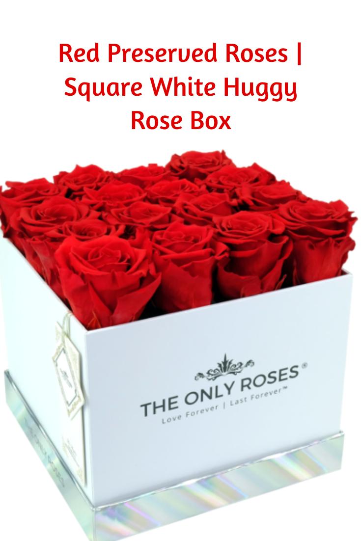 Red Preserved Roses Square White Huggy Rose Box Preserved Roses Rose Rose Gift