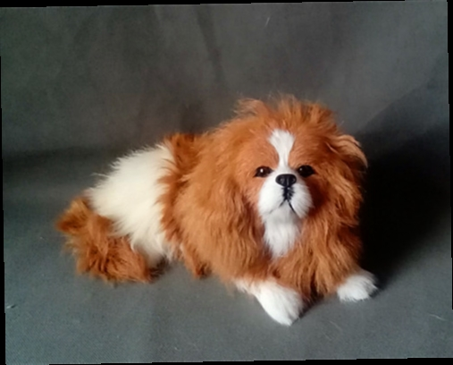 49.00$  Buy now - http://alinss.worldwells.pw/go.php?t=32746822993 - 25x12cm simulation King Charles dog hard model,polyethylene&fur toy,prop.home decoration Xmas gift c338 49.00$