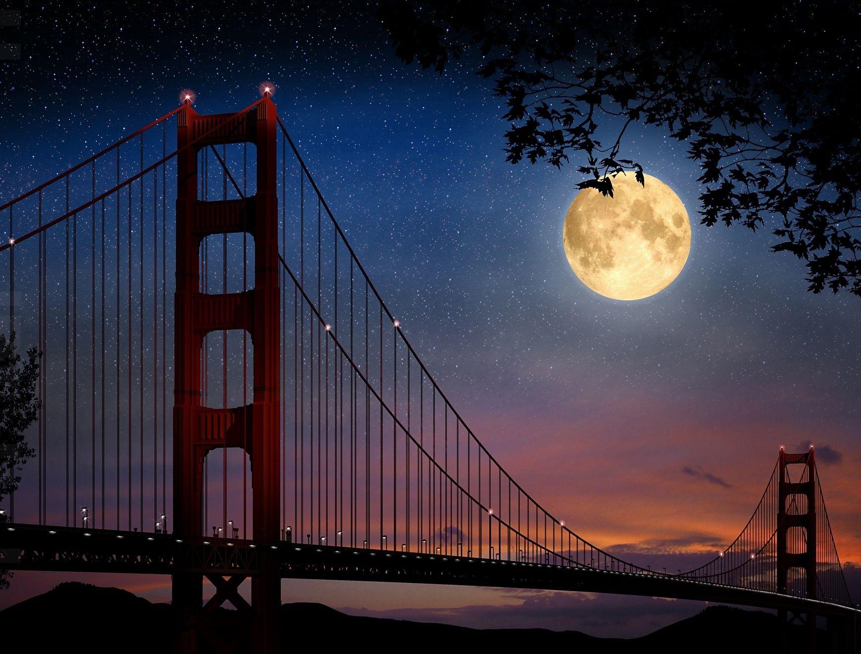 Beautiful Night Stars