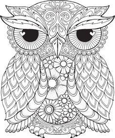 Seth Owl Color Me Hola Angel Colorear Diseño Detallado