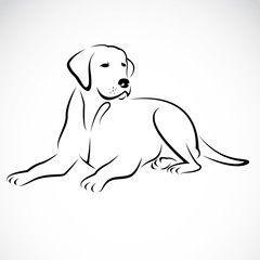 Vector Image Of An Dog Labrador Dog Drawing Simple