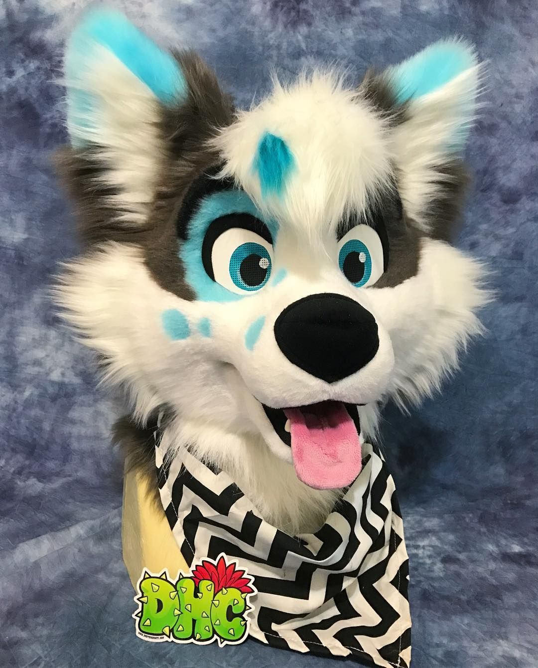 Finished up the adorable husky design I made at  donthugcacti They will be  for sale c7519c37c