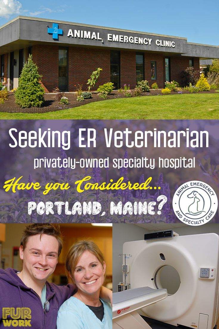 Er doctor needed have you considered portland maine