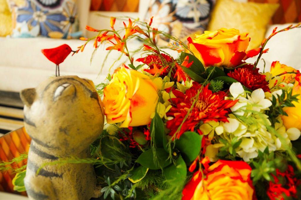 Flores, un gato y un pajarito rojo