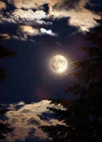 Summer Nights Full Moon By Virginia Bailey Photography