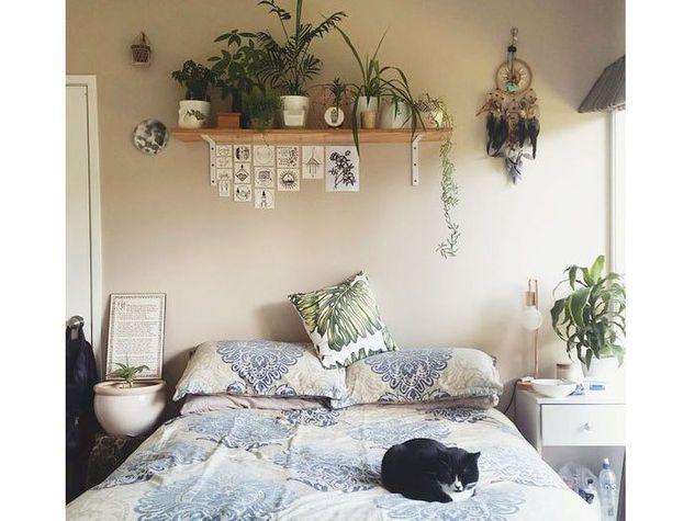 Piante in camera da letto | Apartment nel 2019 | Camera da ...