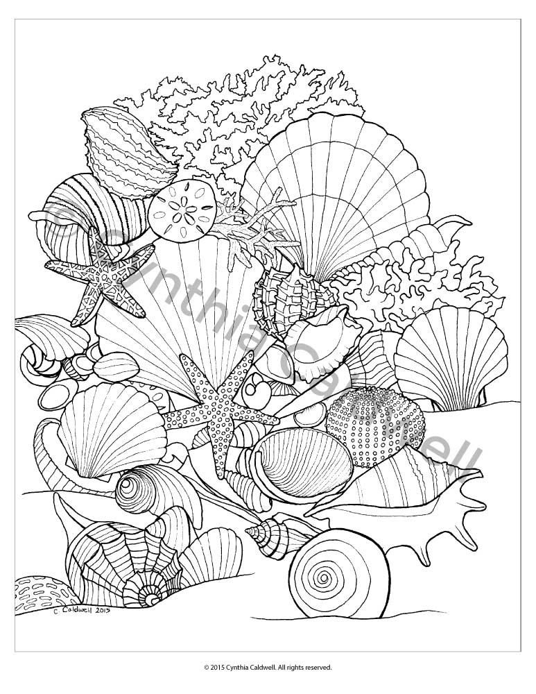 Seashells Coloring Page Instant Download Etsy Coloring Pages Coloring Books Sea Shells