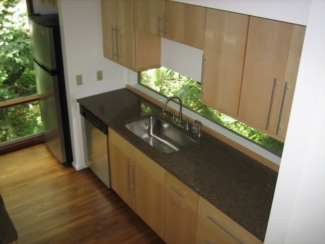 Concrete Countertop, Birch Cabinets With Stainless Apps