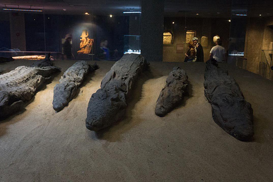 Cocodrilos momificados ofrecidos a Sobek por sus adoradores. (Fanny Schertzer/ CC BY SA 4.0)