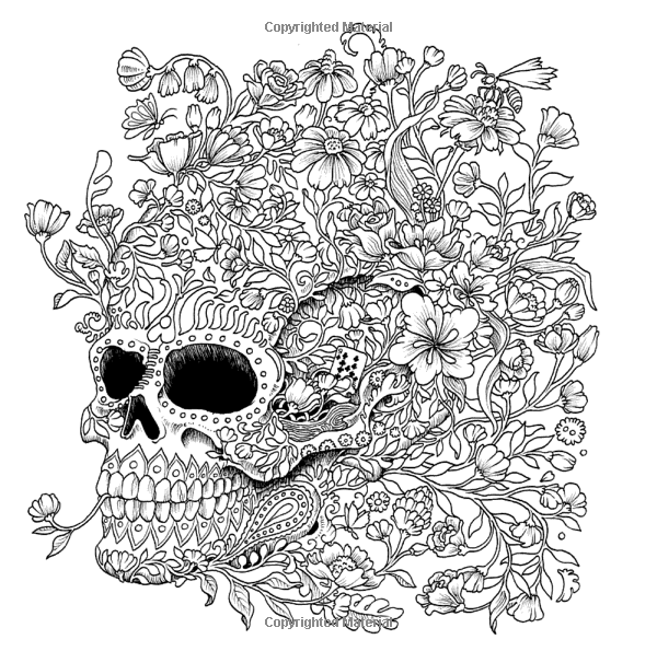 Imagimorphia An Extreme Coloring And Search Challenge Kerby Rosanes 9780399574122 Books A Owl Coloring Pages Detailed Coloring Pages Skull Coloring Pages