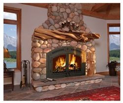 Napoleon Nz6000 Wood Burning Fireplace In 2019 House