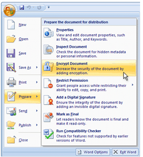 Learn how to use a password in Excel 2010 to save your