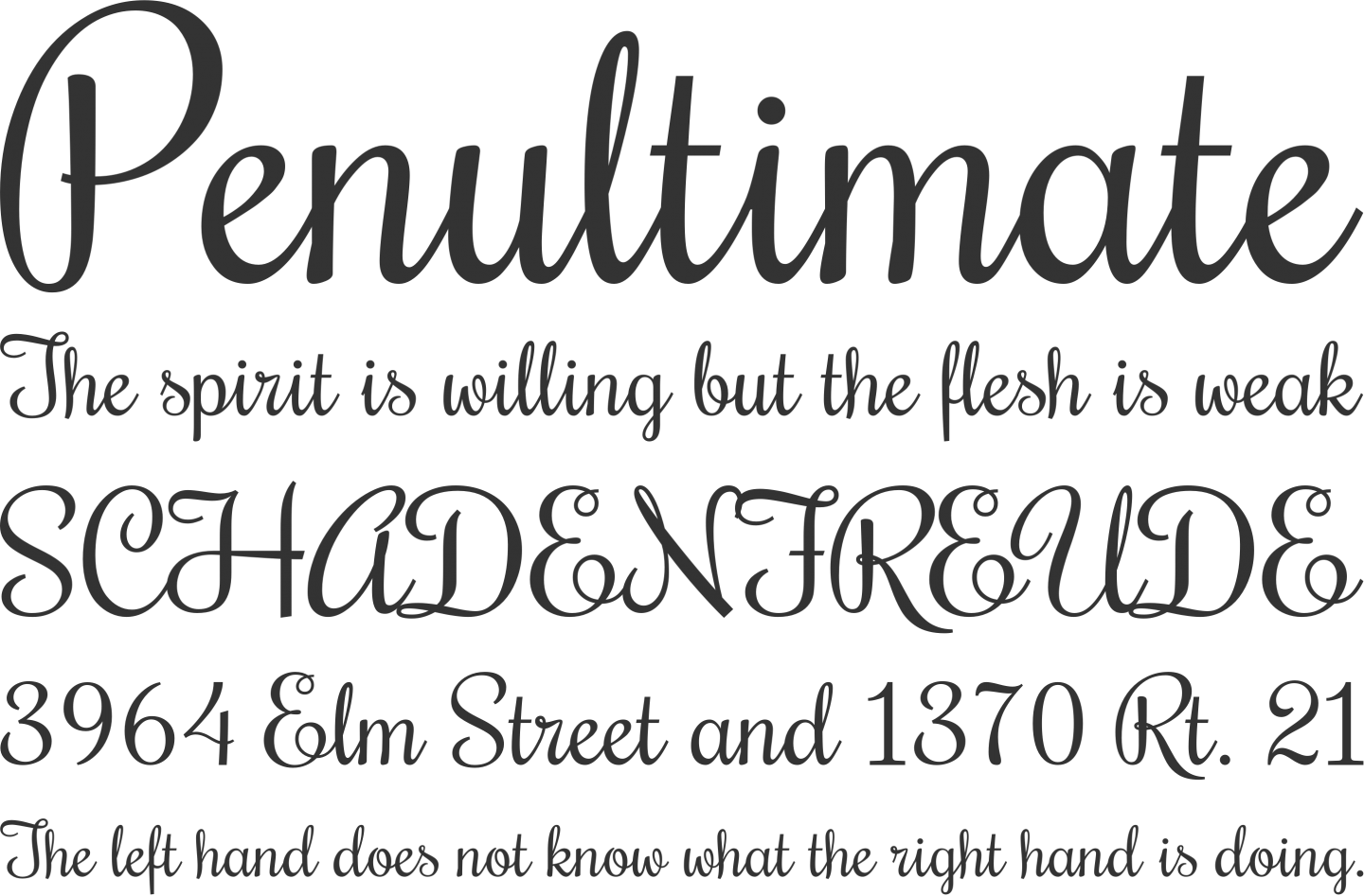 Rochester Font Phrases Free calligraphy fonts, Font