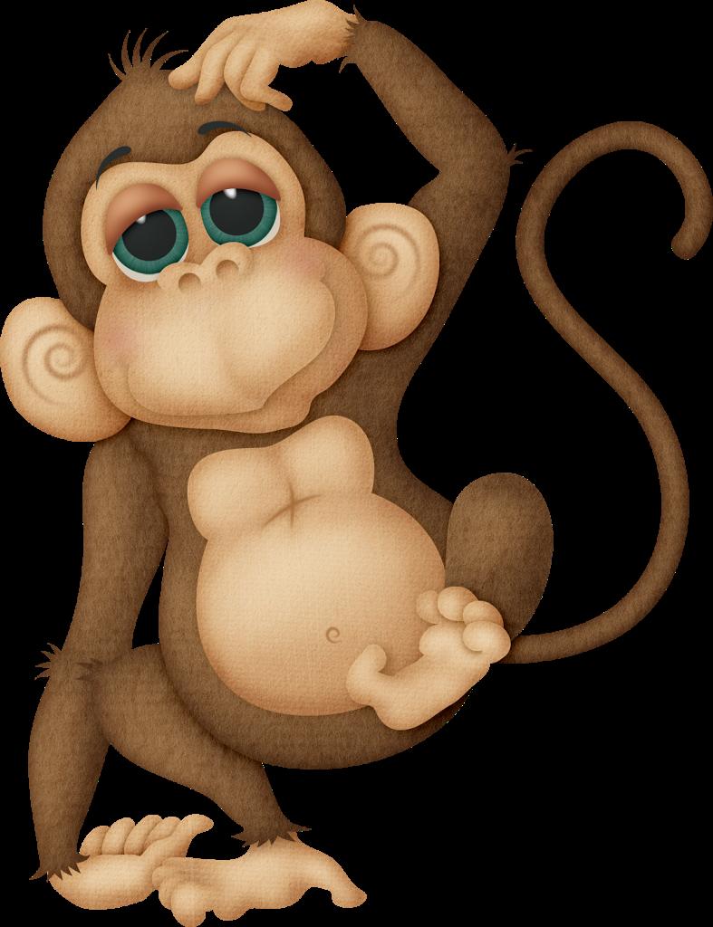 картинки обезьянок без фона
