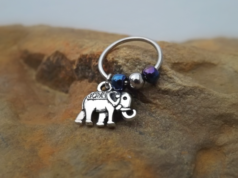 Elephant Cartilage Earring with Purple Blue Bead Captive ...