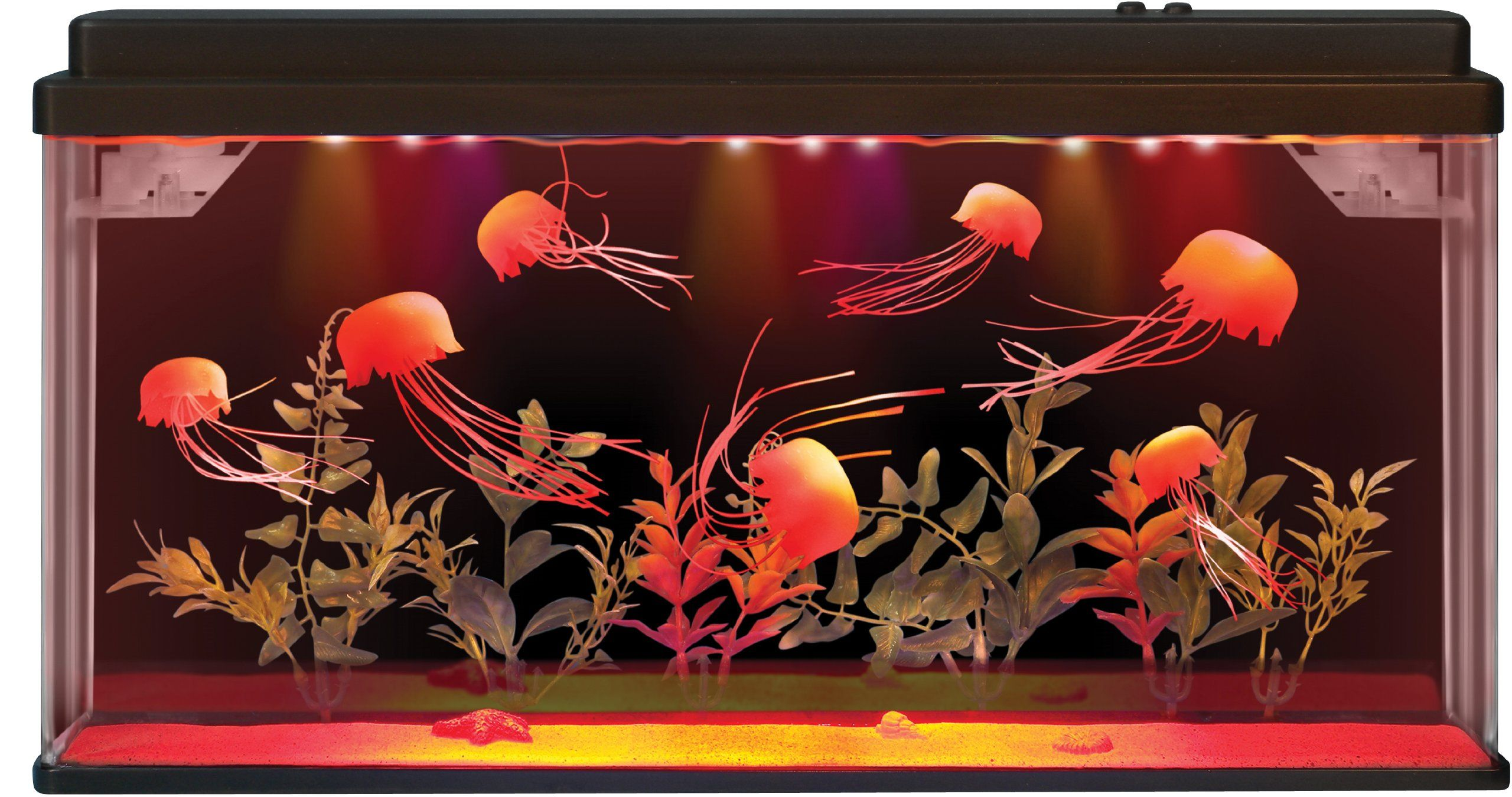 Fascinations Deluxe Jellyfish Aquarium | Lighting Design | Pinterest ...