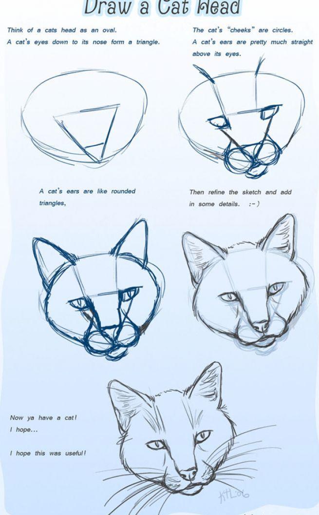 cómo dibujar una cabeza de gato 1 | como hacerlo | Pinterest | Cómo ...