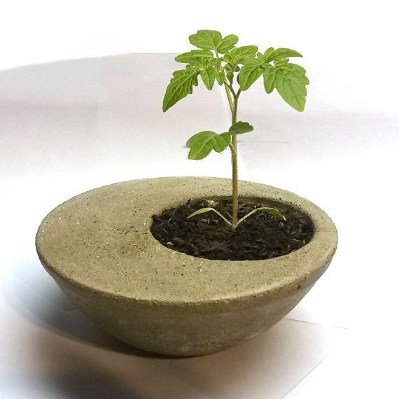Concrete Desk Planter by WellBoundGoods on Etsy
