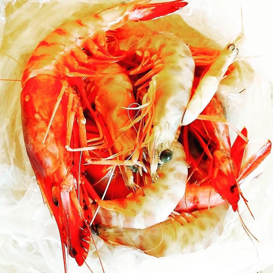En güzel mutfak paylaşımları için kanalımıza abone olunuz. http://www.kadinika.com #cucinandoarte #gnammo #dolce_salato_italiano #kings_masterchef #murgeintavola #eat #igworldclub_food #foodporn #instafood #ognitantocucino #italian_food#pastaaddict #cuoreitaliano #piattiitaliani #lapasta_repost#official_italian_food #tacchiepentole #passionecuoco #ricetteperpassione#friends_moms #unamore_dicucina #_food_repost#mutfakgram#eaa_food #shelfgram_me #quattrointavola #lezzetlerim#paylasim_platformu…