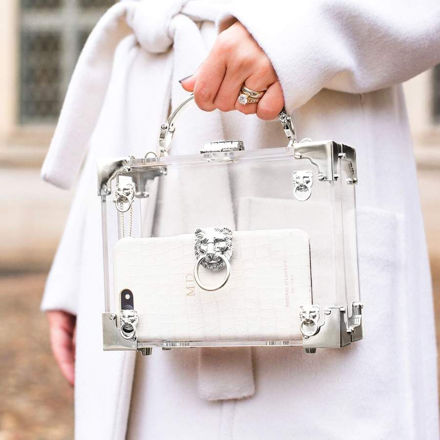 bb2c2baf7 Lion Mini Trunk Clutch in Transparent Acrylic with Silver Hardware from  Aspinal of London