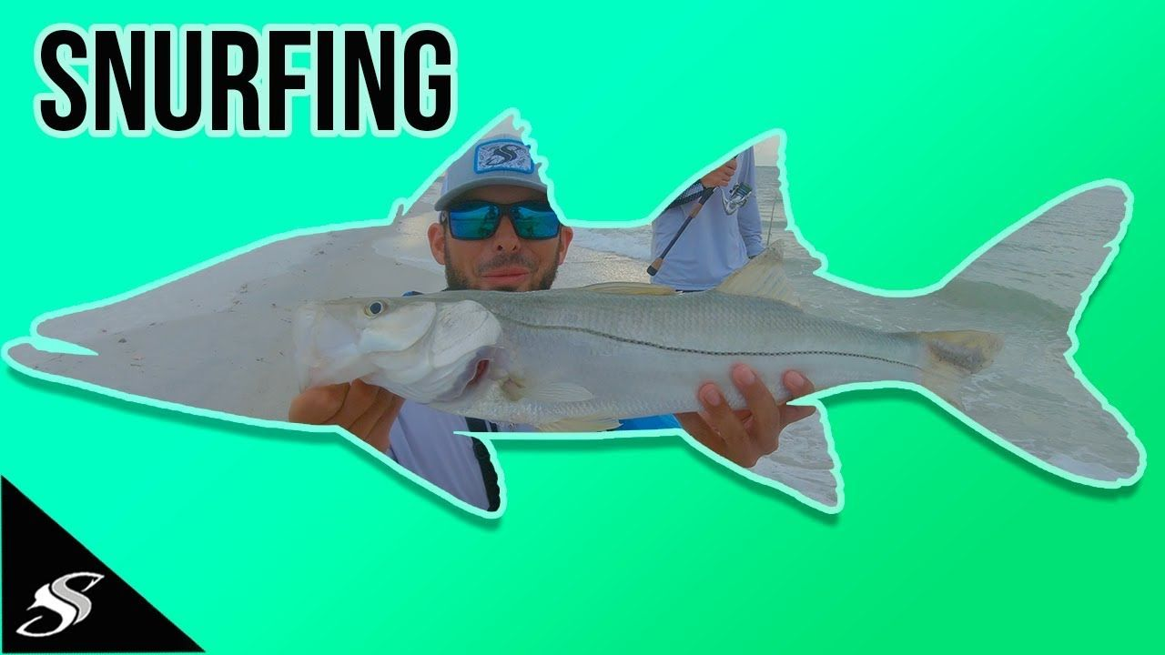 We Went SURF Fishing for SNOOK Crazy Day Pt. 2 Snook