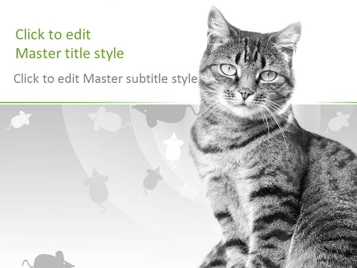 free cat ppt template