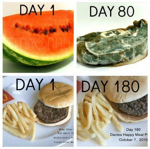 A little example as to why eating natural food is the way to go! Processed foods wreak havoc on our digestive systems and our overall health!