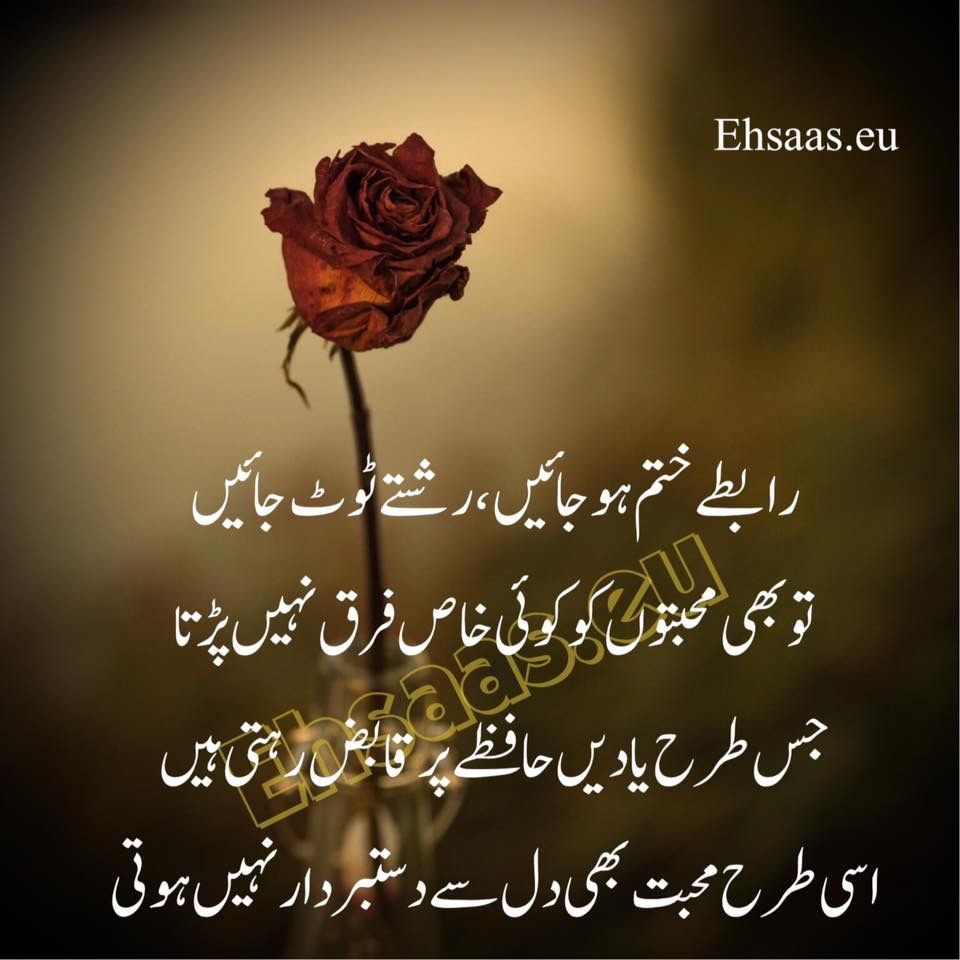 Pin by nauman on urdu quotes pinterest urdu quotes urdu urdu quotes urdu poetry design sufi treats paintings beauty pictures beautiful dhlflorist Images