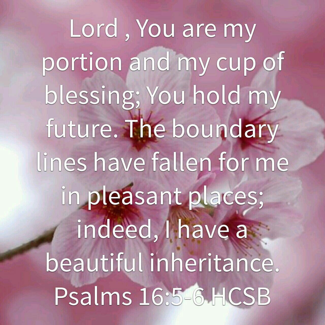 Psalm 16:5-6 HCSB | Psalms verses, Words of wisdom quotes, Psalms