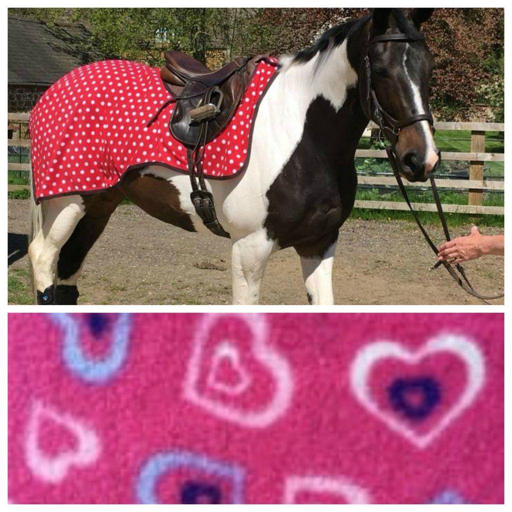 Best On Horse Exercise Sheet Striped Fleece Equestrian Outdoor Riding Velcro