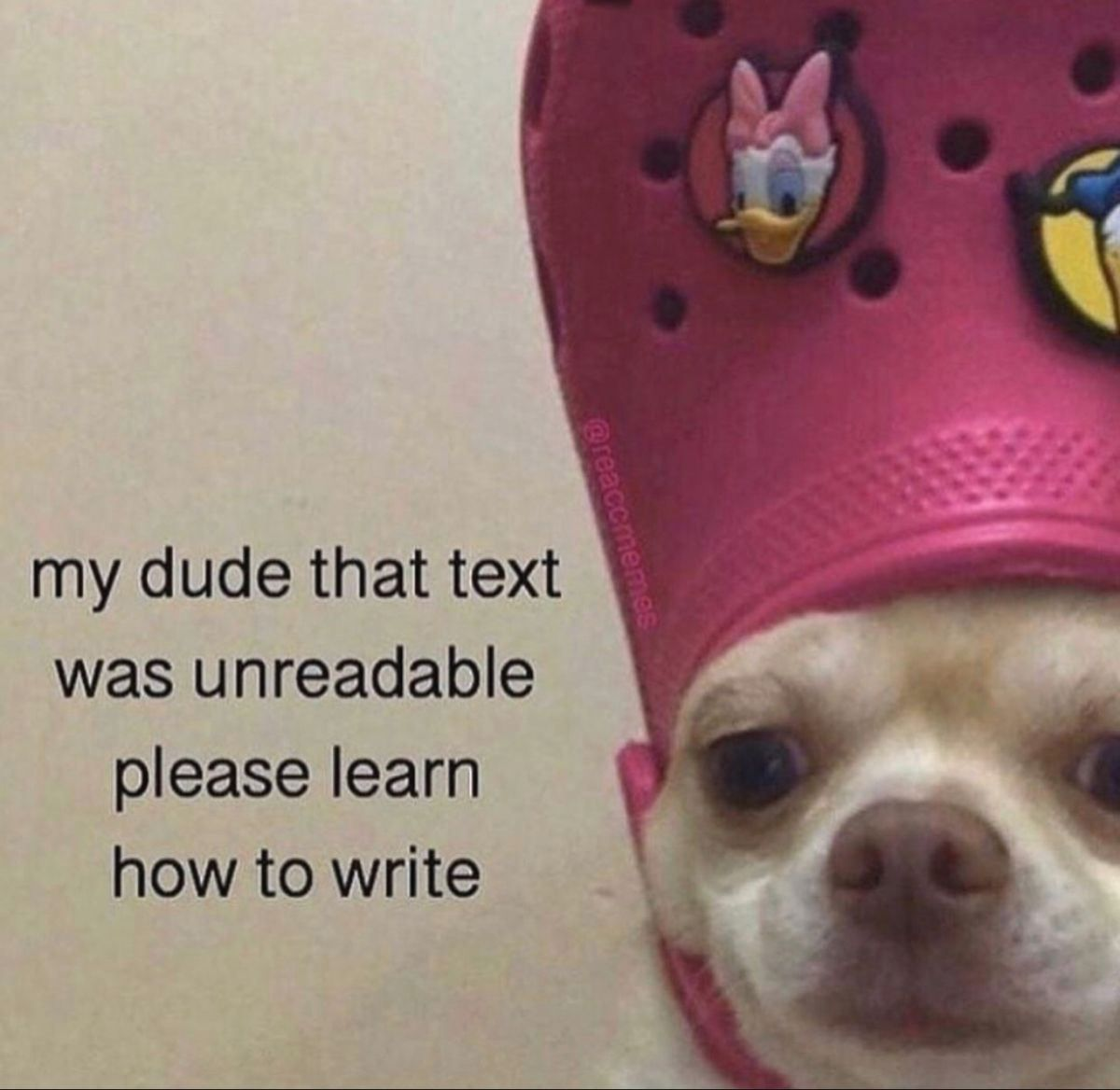 Memes To Send To Group Chat Memes To Send To The Group Chat Really Funny Memes Stupid Funny Memes Funny Relatable Memes