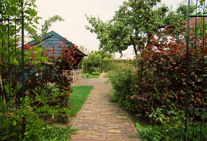 Buytengewoon tuinontwerp tuinaanleg tuinonderhoud
