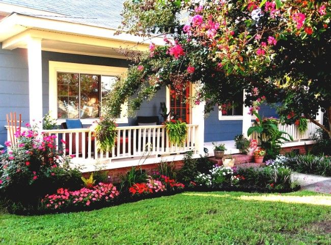Inspiring Red Rose Garden In Front Yard For A Residential Home
