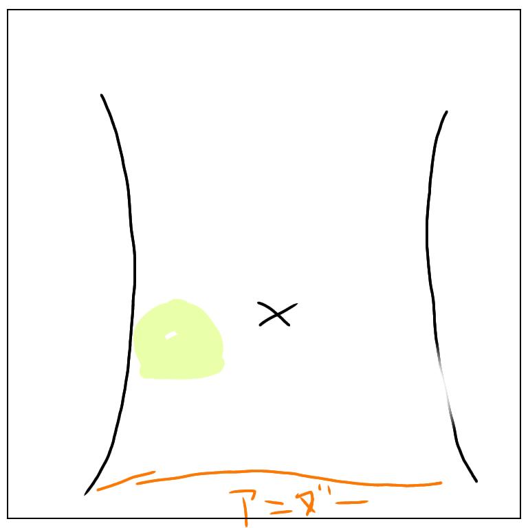妊娠6ヶ月 胎動