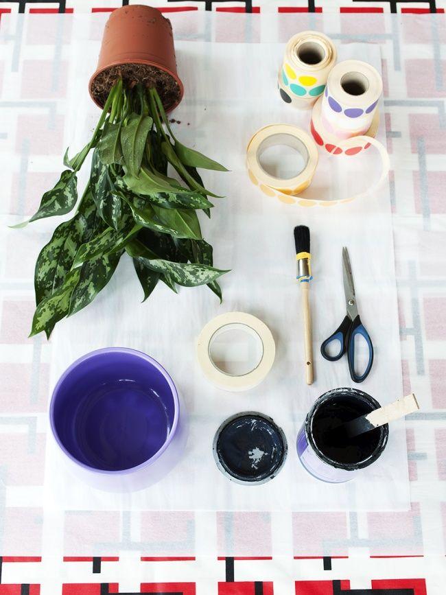 DIY: Kunstvolle Kompagnons für den Kolbenfaden  #DIY #Pflanzen #Freunde #Kolbenfaden