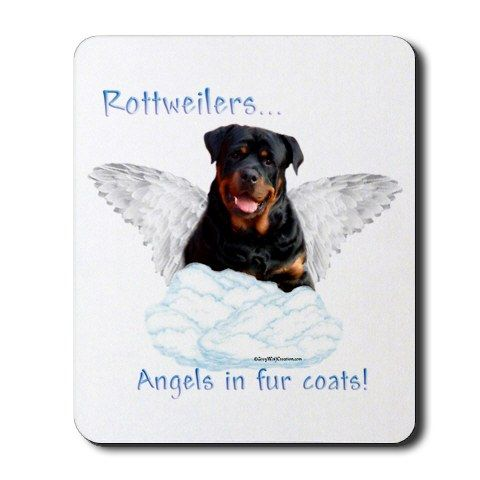 Funny Animal Quotes Rottweiler Quotesgram Rottweiler Funny Rottweiler Rottweiler Love