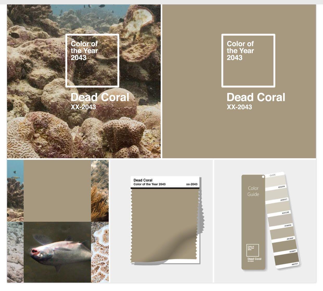 Color of the Year 2043 Dead Coral ile ilgili görsel sonucu