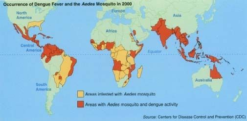 This map shows the occurrence of Dengue fever and its relationship