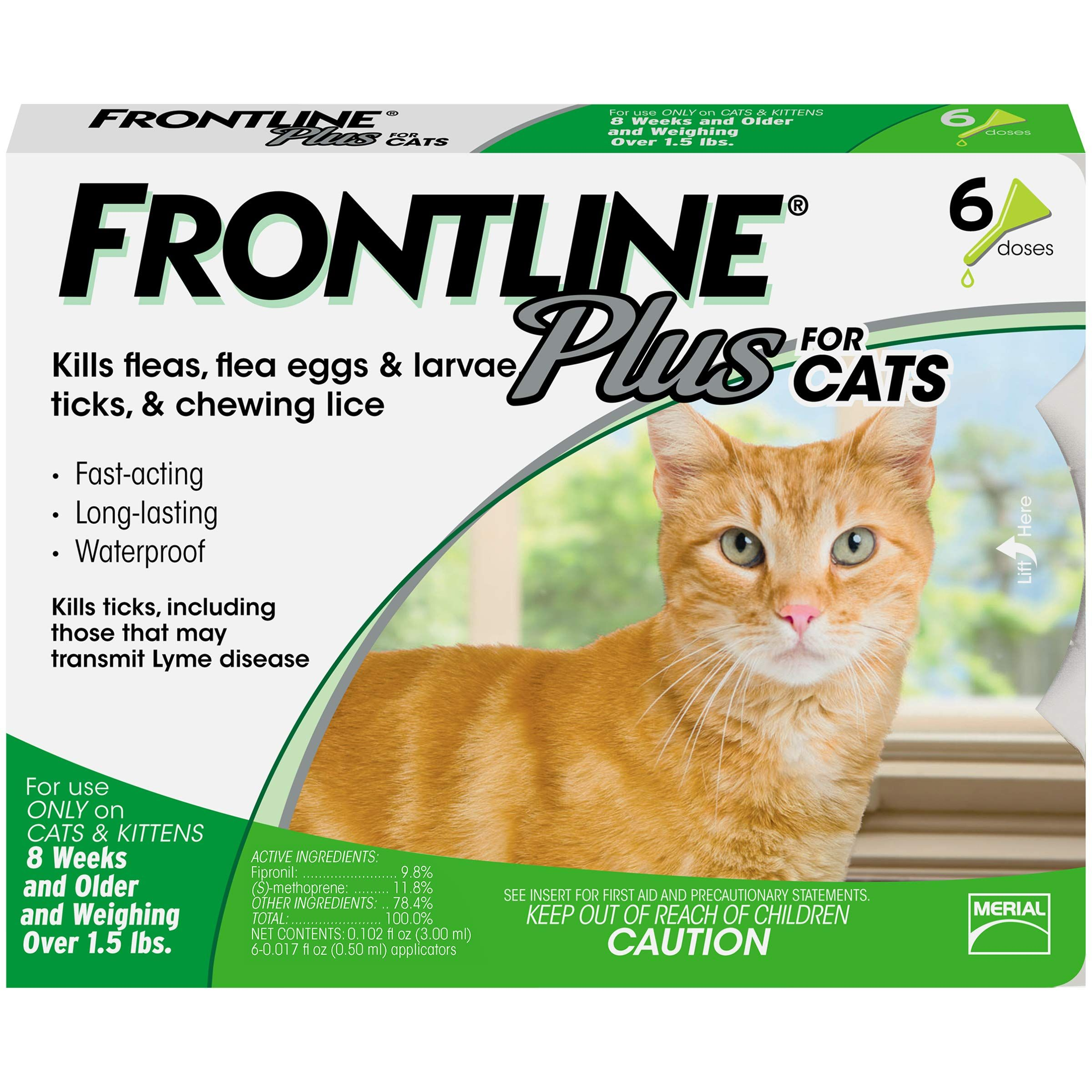 Frontline Plus For Cats 6 Month With Images Frontline Plus For Cats Tick Treatment For Cats Cat Fleas