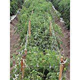 Survival Hortomallas Professional Grade Vegetable Support 400 x 300