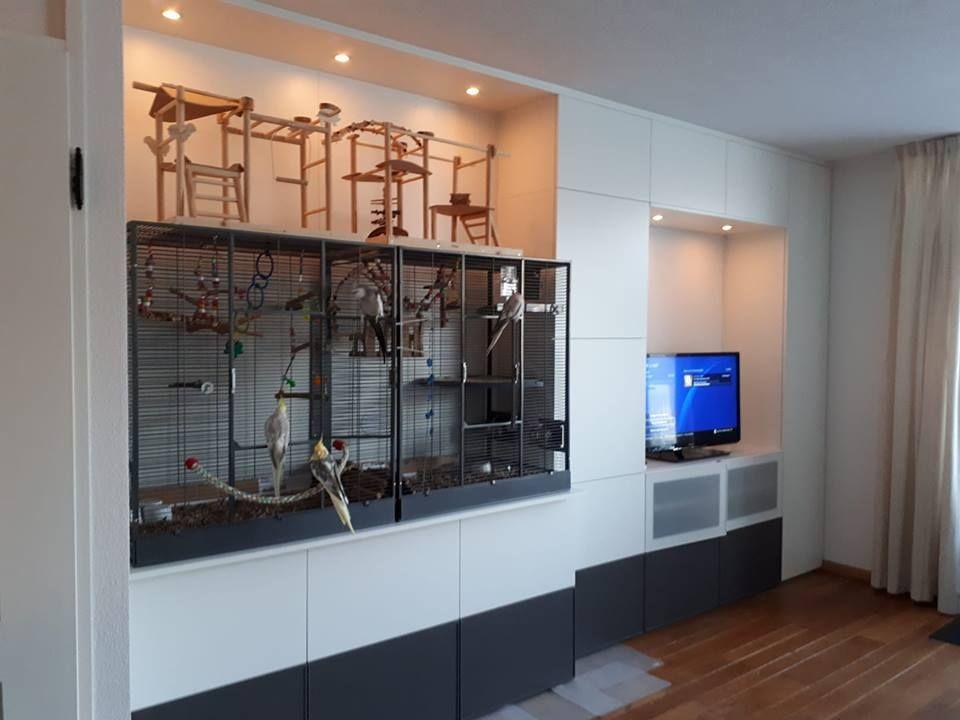 Hoge Kasten Woonkamer : Ombouw in woonkamer met lichtkoven en hoge kast voor vogelkooi en