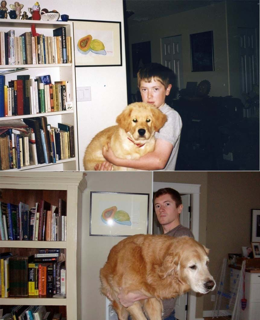 Your Pet Will Always Be Your Most Loyal Friend Animals With - 26 dogs puppyhood photos
