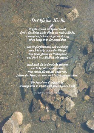 Der Kleine Hecht Hecht Und Gedichte