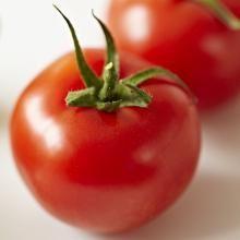 Kweek je groenten ondersteboven!