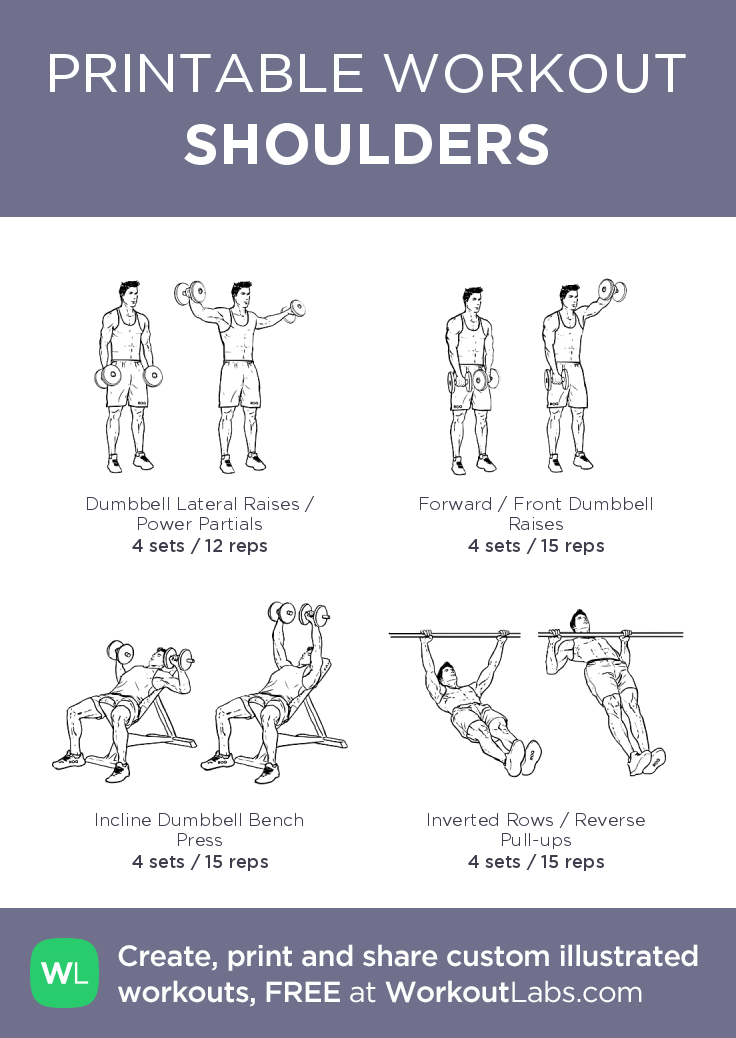 Shoulder Exercises With Weights Pdf Anti Feixista