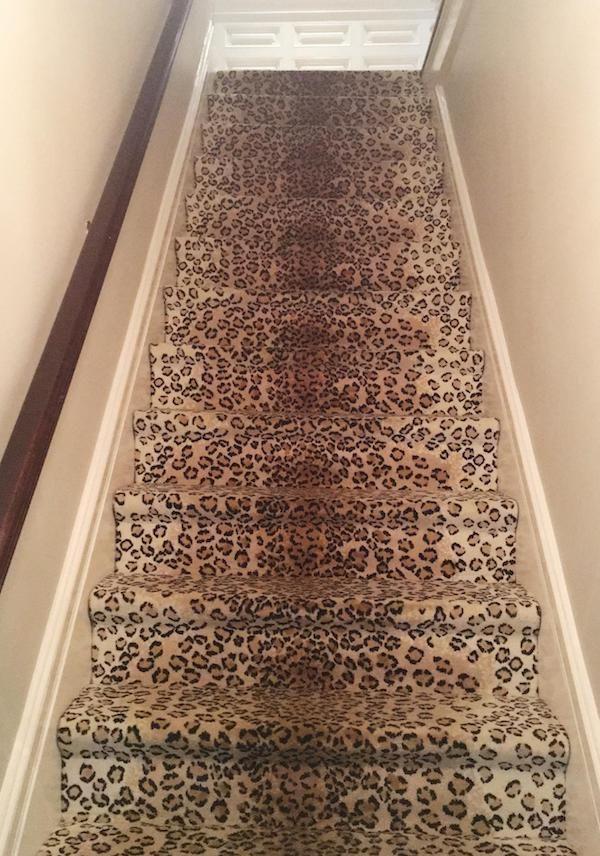 Best Hottest No Cost Leopard Carpet Stairs Concepts Among The 400 x 300