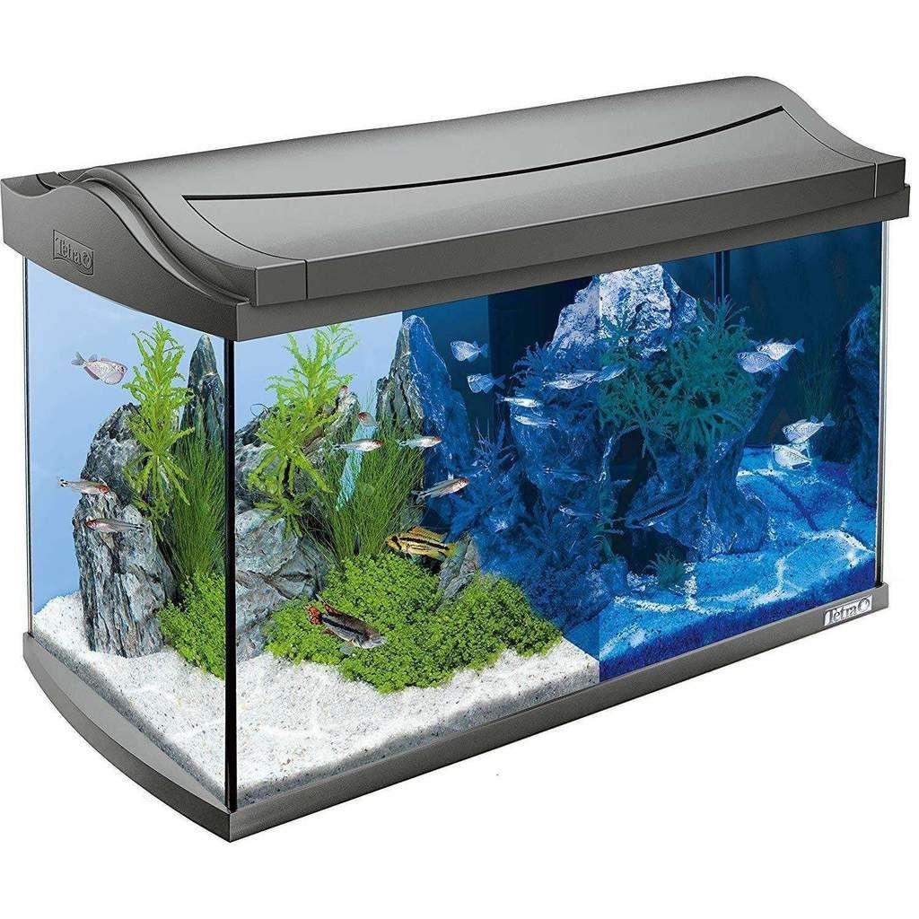 Tetra Aquaart Led Discovery Line 60 L Aquarium Komplettset Mit Easycrystal Filter Led Aquarium 60l Aquarium