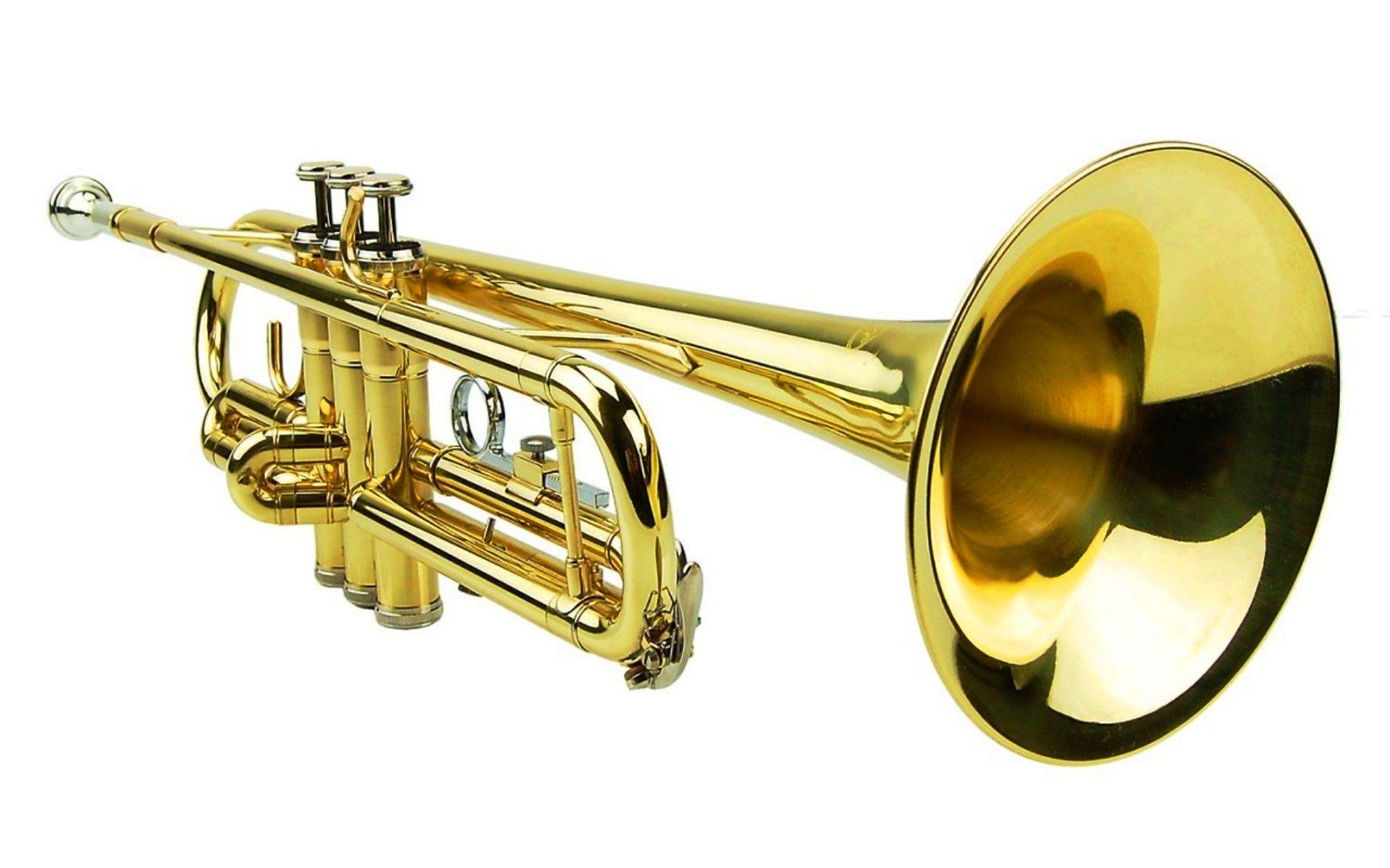 Звуки труба скачать бесплатно