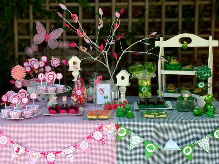 My Kids Joint Butterfly Frog Garden Birthday Party