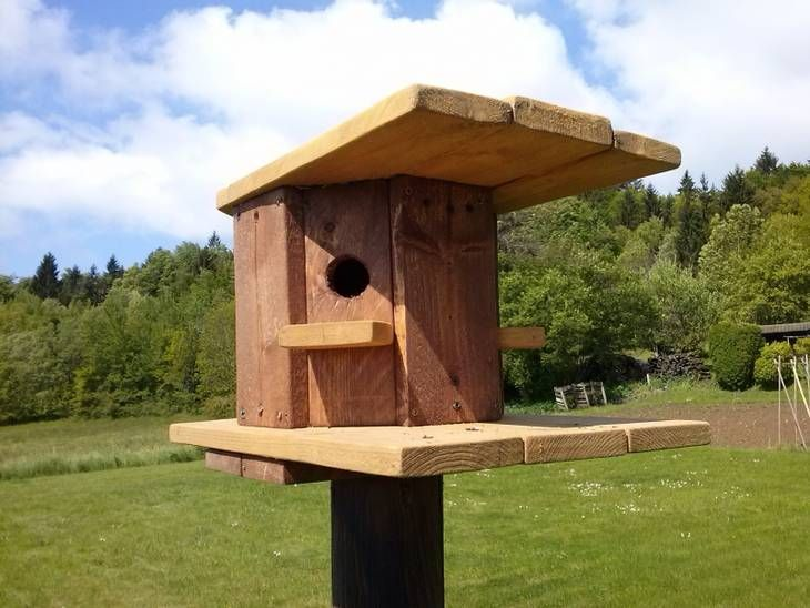 cabane oiseaux en bois de palette r cup 39 cabane oiseaux oiseaux et cabane. Black Bedroom Furniture Sets. Home Design Ideas